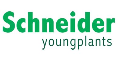 Schneider-youngplants